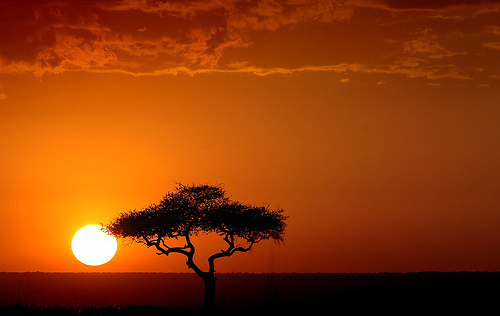 Kapuscinski nos describe paisajes africanos como este