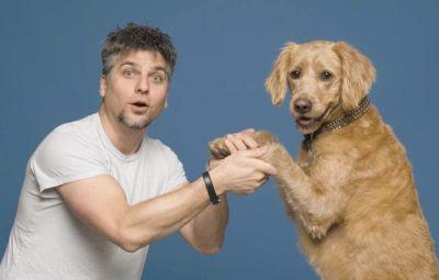 Garth Stein nos cuenta una historia narrada por un perro de nombre Enzo