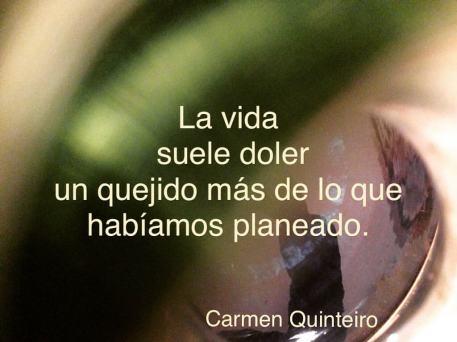 Uno de los textos de Carmen Quinteiro publicados en las redes sociales