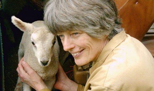 """Rosamund Young, autora de """"A vida secreta das vacas"""""""
